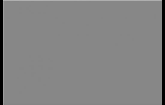Gray 18%