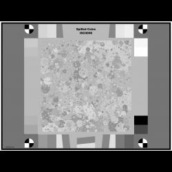 Black & White Imatest Spilled Coins (Dead Leaves) Test Chart